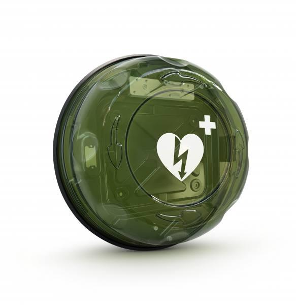 Wandkasten ROTAID Plus mit Alarm, transparentes Rauchglas, grün